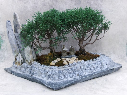 bonsai11.jpg