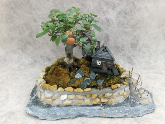 bonsai8.jpg