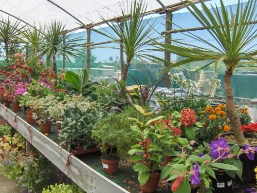 plantas-exterior2.jpg
